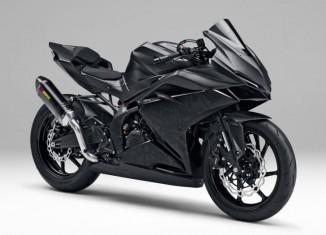 Light Weight Super Sport Concept, Calon Penerus CBR250R